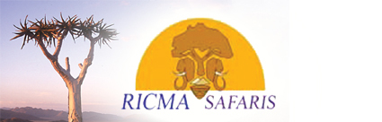 Ricma Safaris